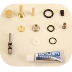Kit de révision N29617 - Pour vanne Bauer type 86242